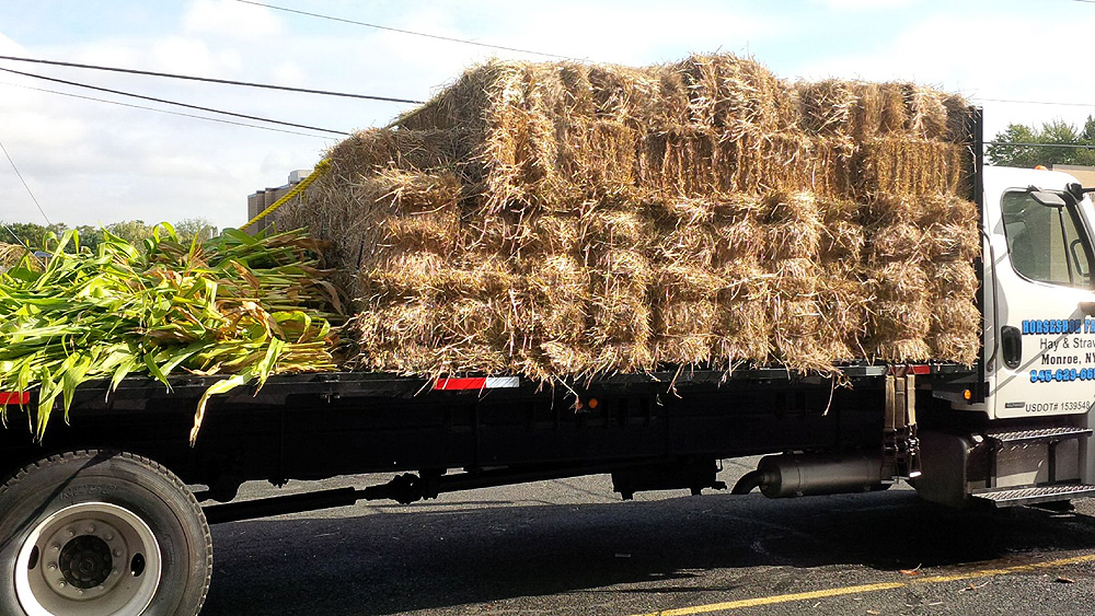Hay bales for harvest display arrive for flame resistance.